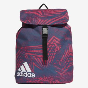 Flap Graphic Backpack
